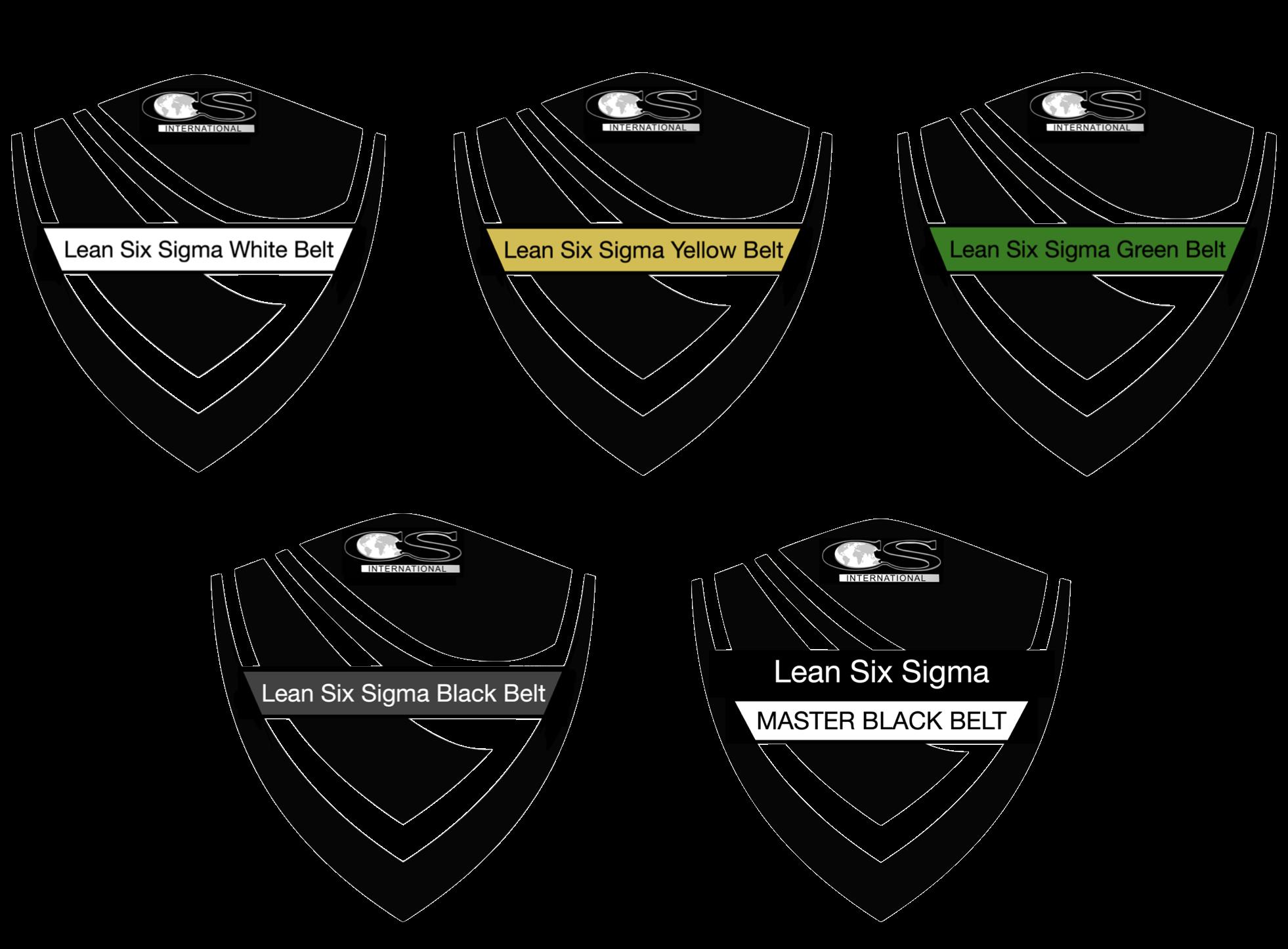 All Lean Six Sigma Belts Final Logos