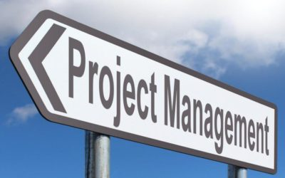 Steps for Building a Relationship with Your Project Management Team